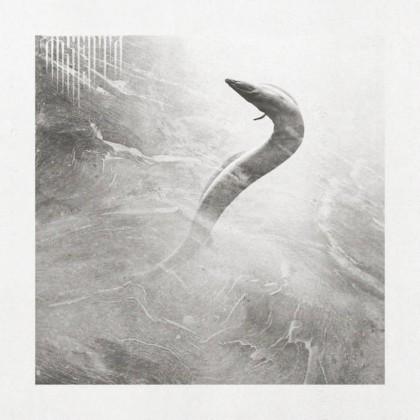 Absenta – Eel