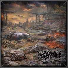 INDETERMINABLE (Russia) - Symbols That Disappeared - CD
