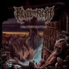 Revel In Flesh - Deathevokation - LP